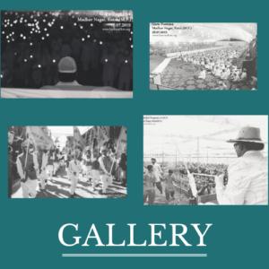 Hare Madhav Gallery